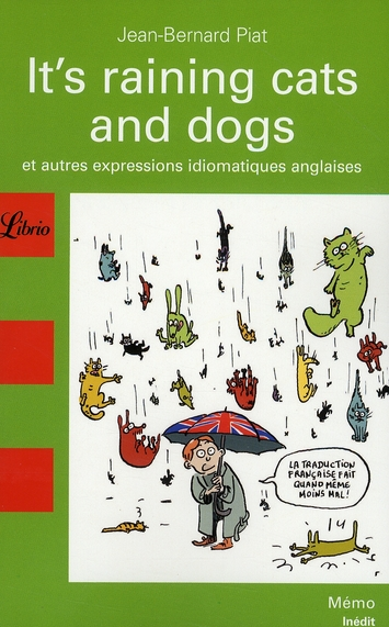 I'ts raining cats and dogs ; et autres expressions idiomatiques anglaises