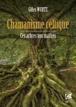 Vente EBooks : Chamanisme celtique  - Gilles Wurtz
