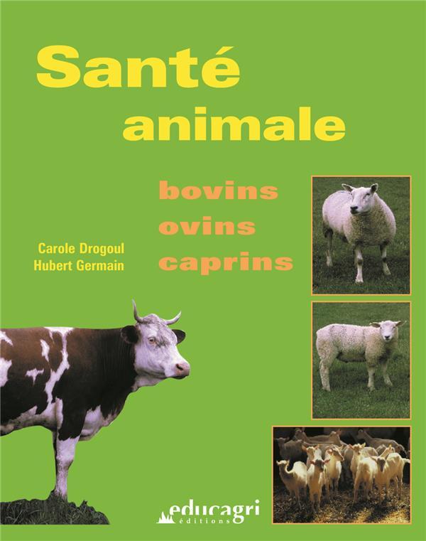 Santé animale ; bovins, ovins, caprins