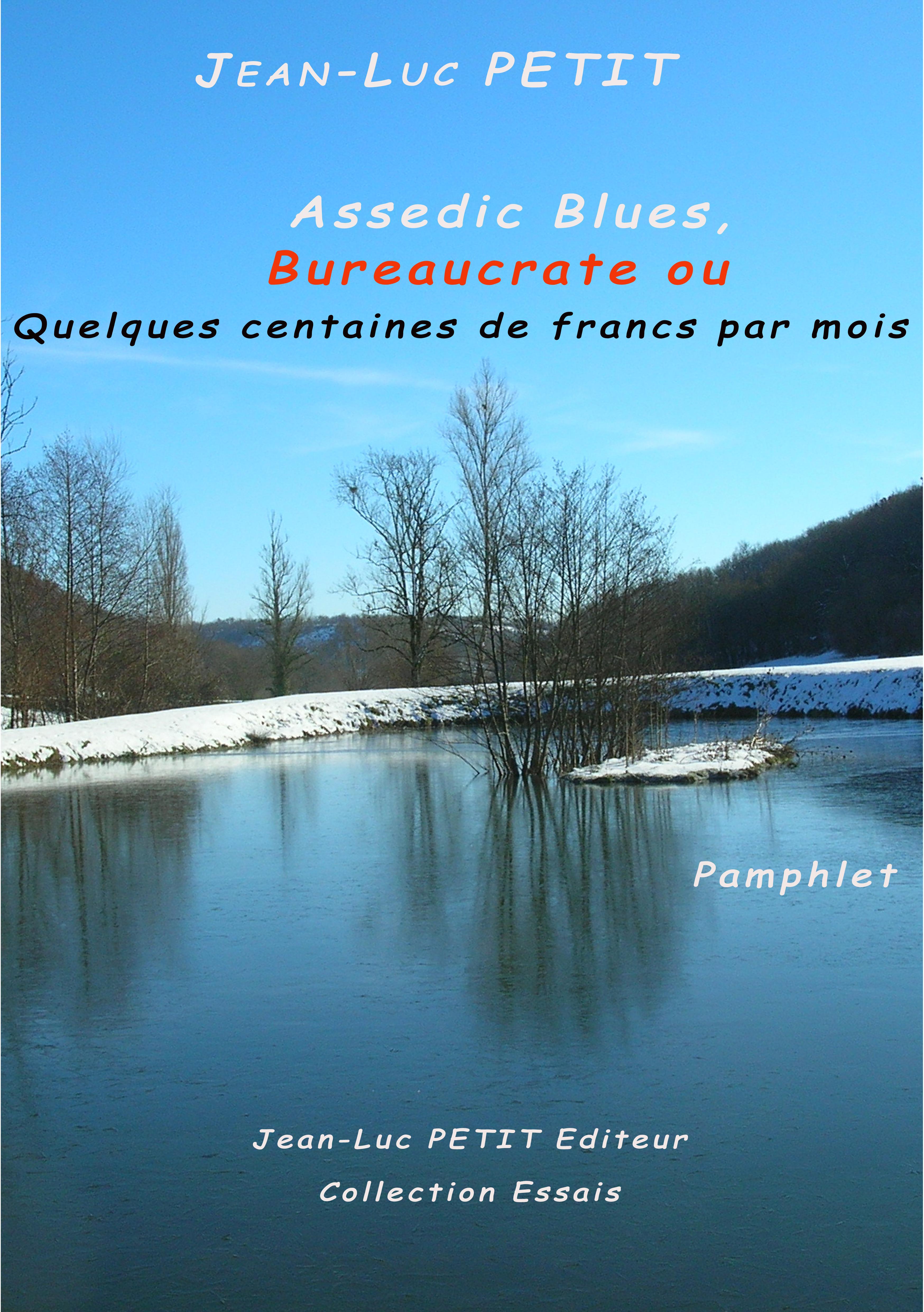 Assedic Blues ; bureaucrate ou quelques centaines de francs par mois