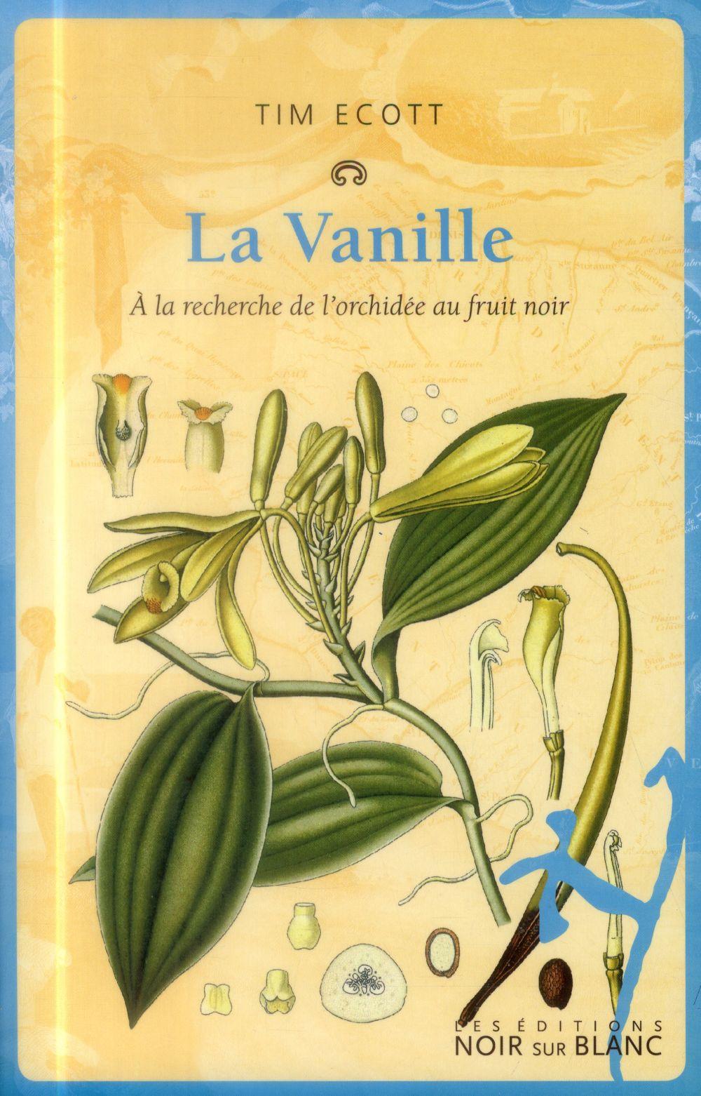 La vanille ; à la recherche de l'orchidée au fruit noir