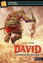 Vente EBooks : David, le berger devenu roi - Histoires de la Bible - Dès 11 ans  - Quitterie Simon