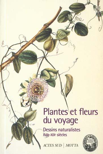 Les plantes et les fleurs du voyage