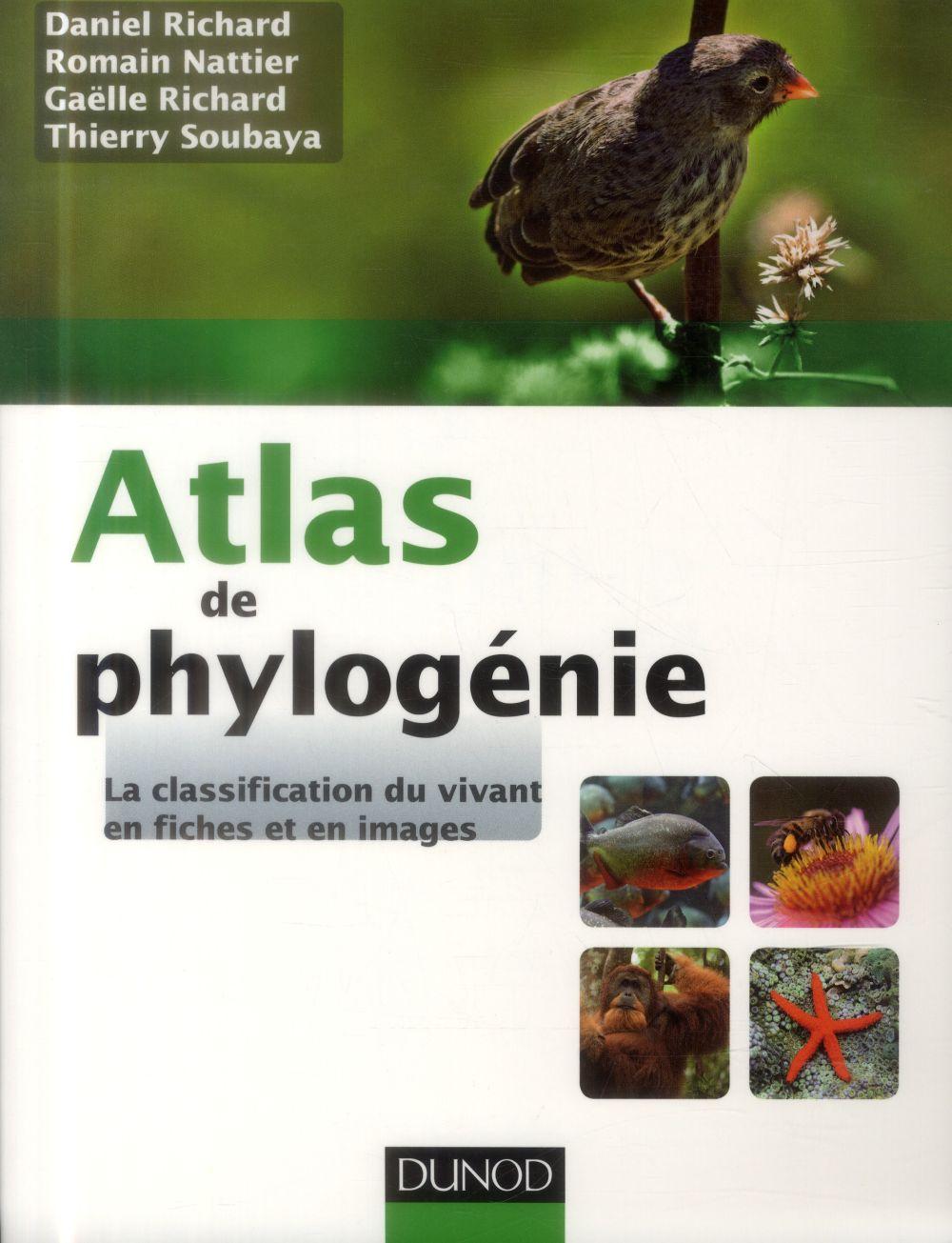 Atlas de phylogénie ; la classification du vivant en fiches et en images