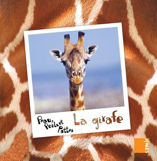 PEAU, POILS ET PATTES ; la girafe