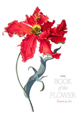 The book of the flower flowers in art