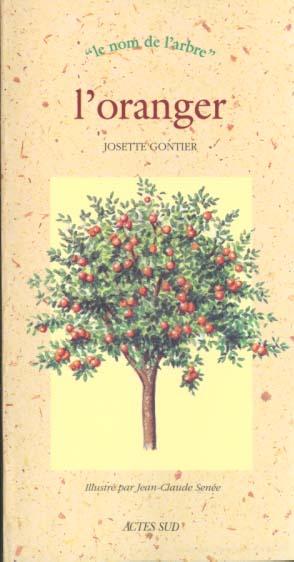 L'oranger - le nom de l'arbre