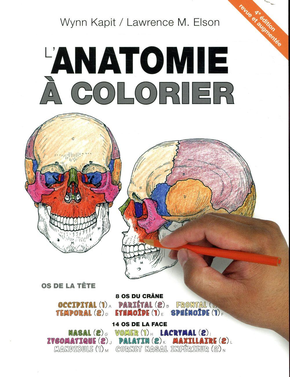 Anatomie à colorier (4e édition)