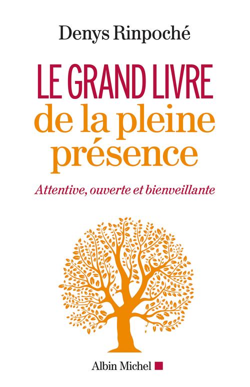 Le Grand Livre de la pleine présence  - Denys Rimpoche