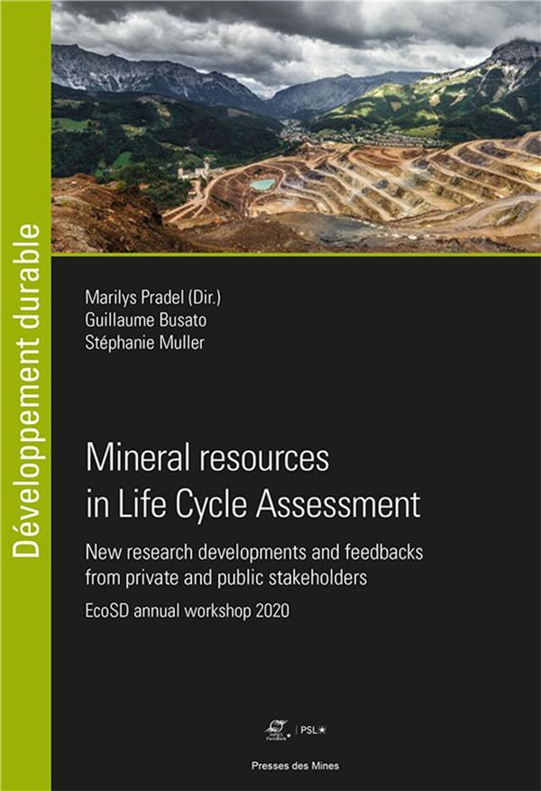 Mineral resources in life cycle assessment : new research developments and feedbacks from private and public stakeholders ; EcoSD annual workshop 2020