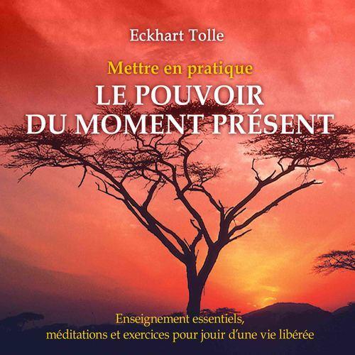 Mettre en pratique le pouvoir du moment présent : Enseignement essentiels, méditations et exercices pour jouir d'une vie libérée