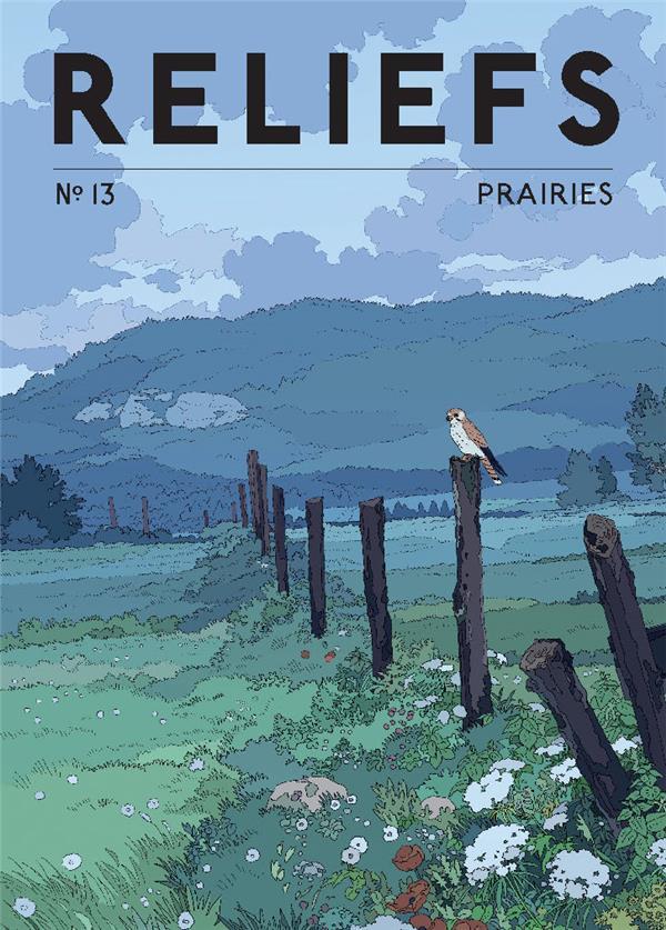 Reliefs n.13 ; prairies