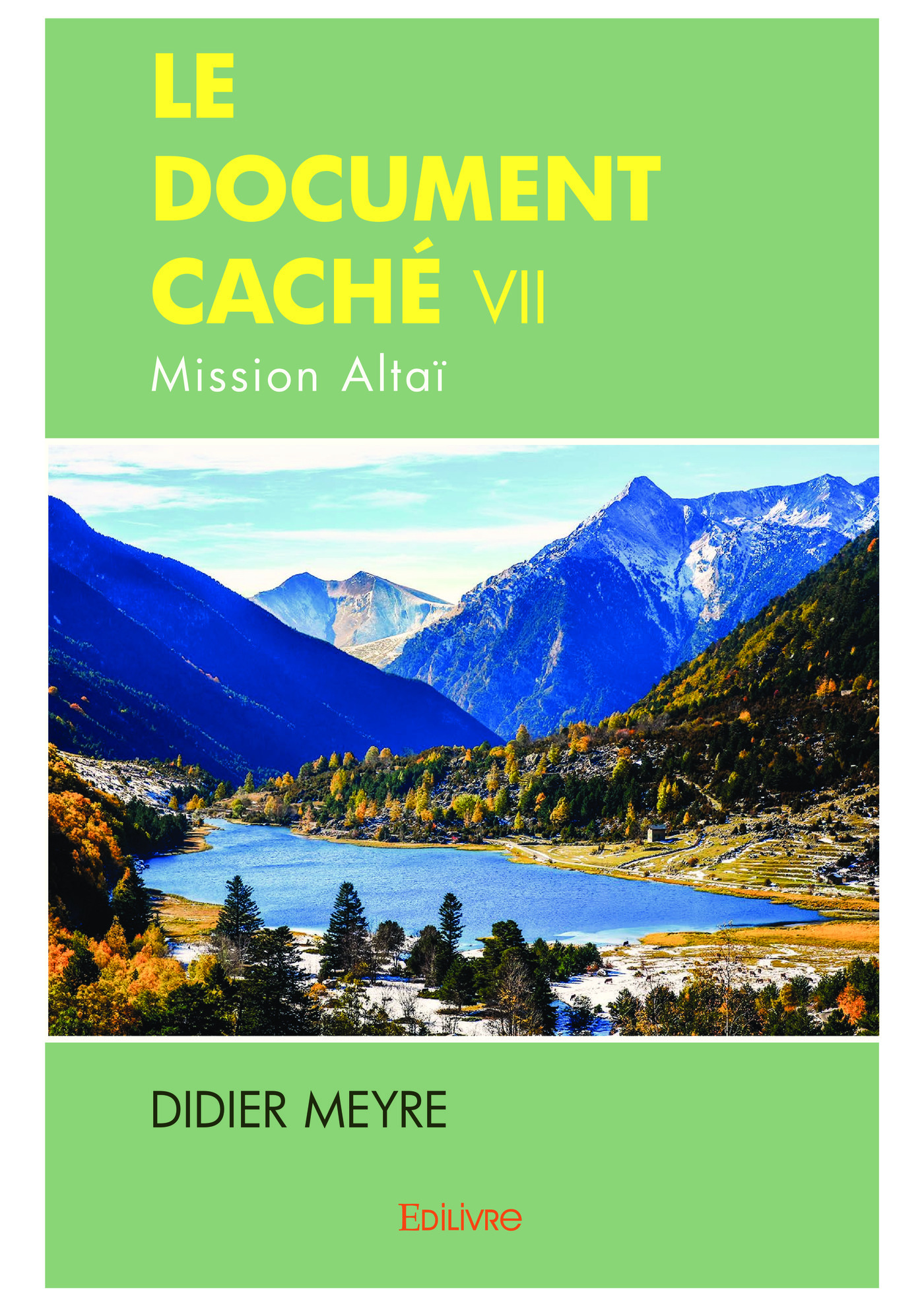 Le Document caché VII  - Didier Meyre