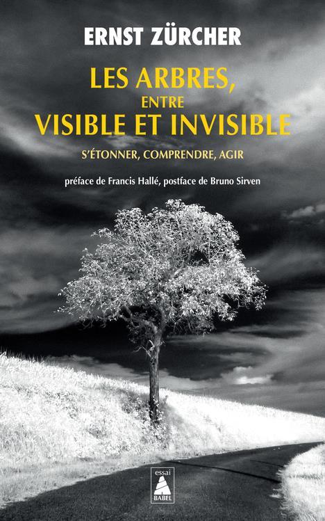 Les arbres, entre visible et invisible : s'étonner, comprendre, agir