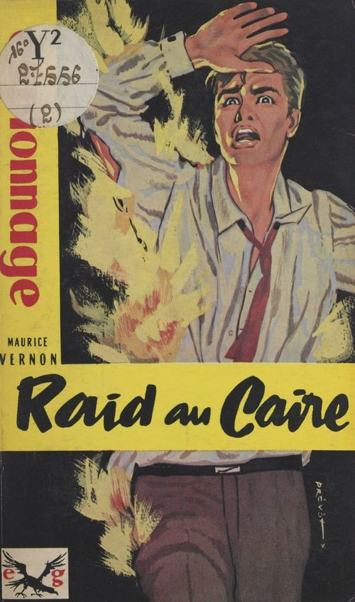 Raid au Caire