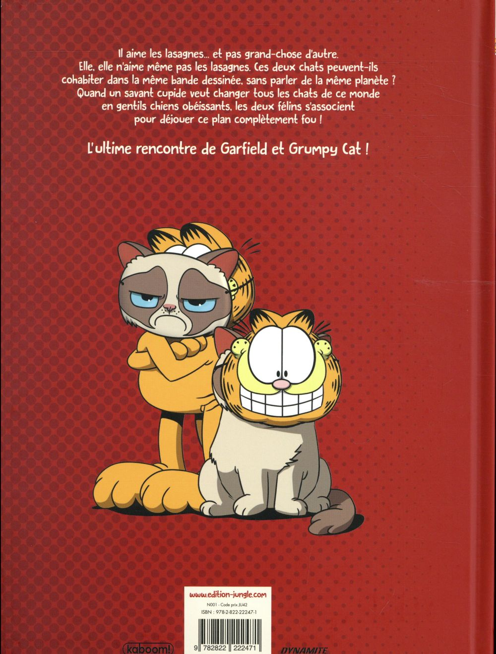 Grumpy cat, Garfield, comme chiens et chats !