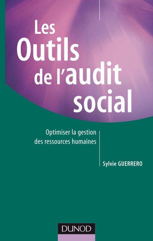 Les outils de l'audit social ; optimiser la gestion des ressources humaines