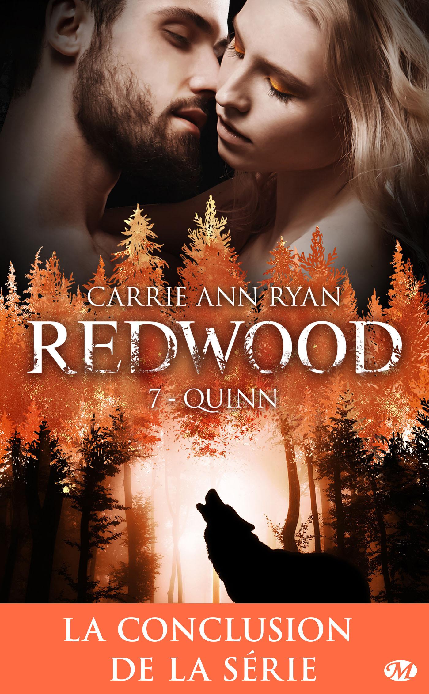 Quinn  - Carrie Ann Ryan