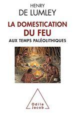 Vente EBooks : La Domestication du feu aux temps paléolithiques  - Henry de Lumley