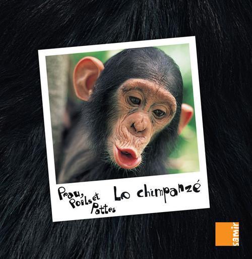 Peau, Poils Et Pattes; Le Chimpanze