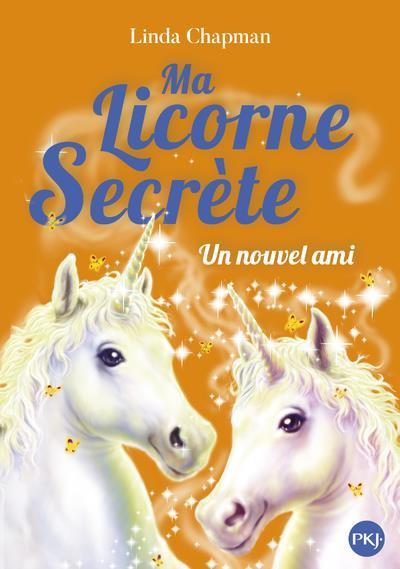 Ma licorne secrète t.6 ; un nouvel ami