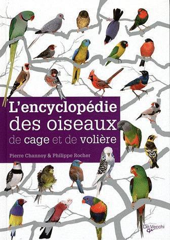Encyclopedie Des Oiseaux