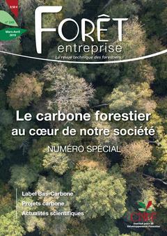 Le carbone forestier au coeur de notre société