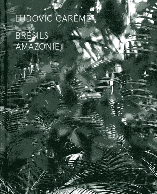 Brésils ; Amazonie