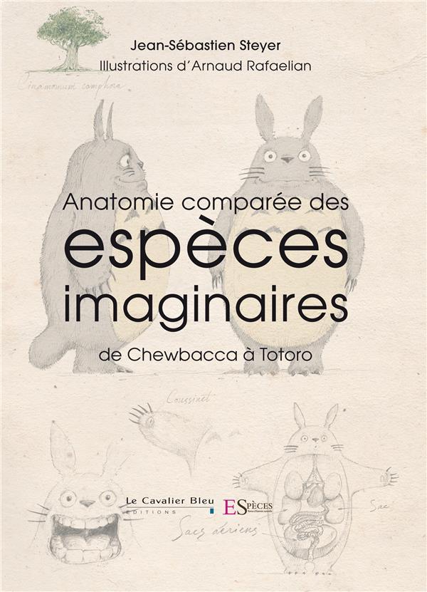 anatomie comparée des espèces imaginaires ; de Chewbacca à Totoro