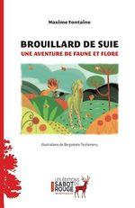 Vente Livre Numérique : Brouillard de suie  - Maxime Fontaine
