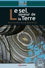 Vente Livre Numérique : Le sel, saveur de la Terre  - Patrick De Wever - Jean-Marie Rouchy