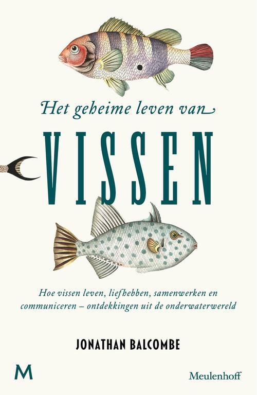 Het geheime leven van vissen