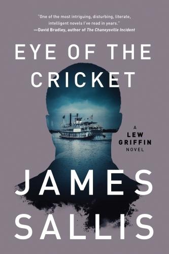 Eye of the Cricket