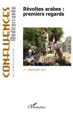 Vente EBooks : Révoltes arabes : premiers regards  - Pierre BLANC