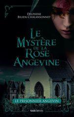 Le mystère de la rose angevine t.2 ; le prisonnier angevin