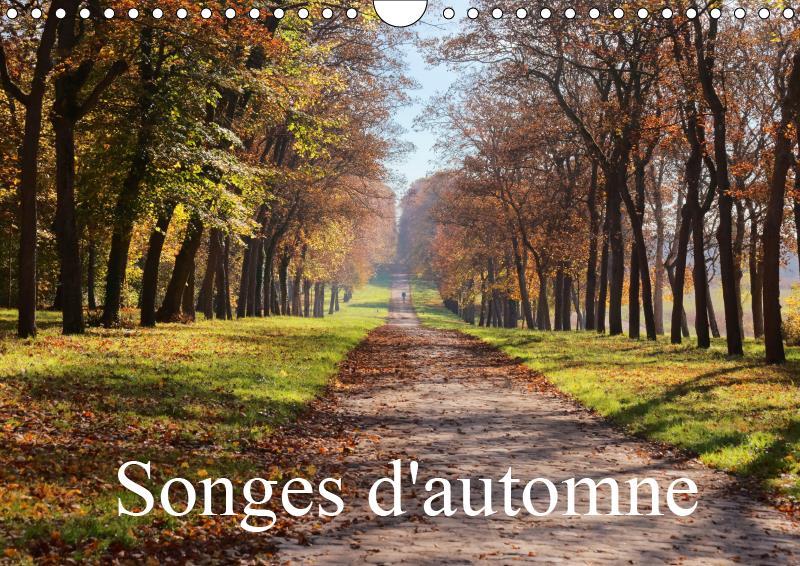Songes d'automne (calendrier mural 2019 din a4 horizontal) - une serie d'images poetiques et automna