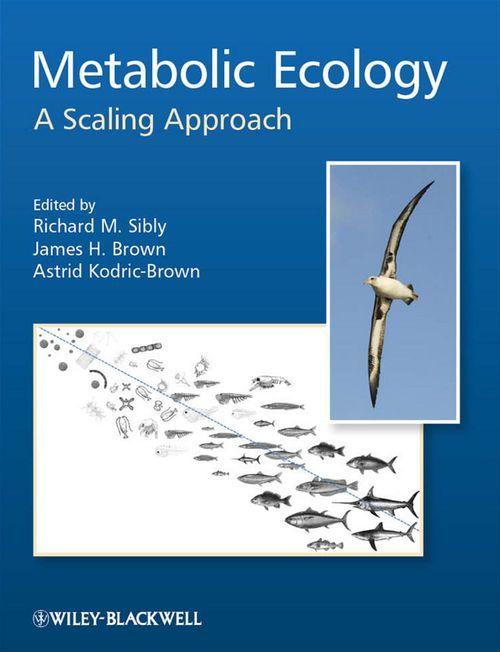 Metabolic Ecology