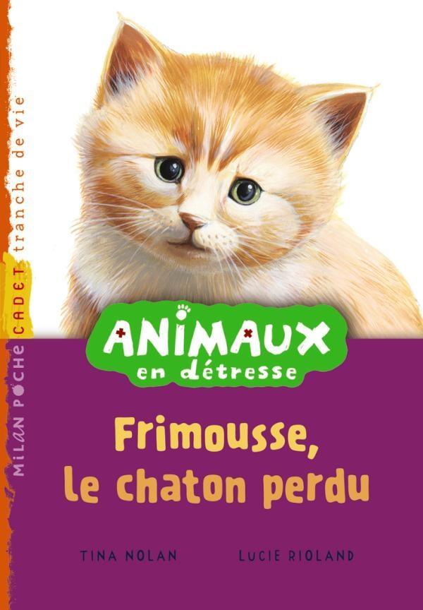 Animaux en détresse t.2 ; Frimousse, le chaton perdu