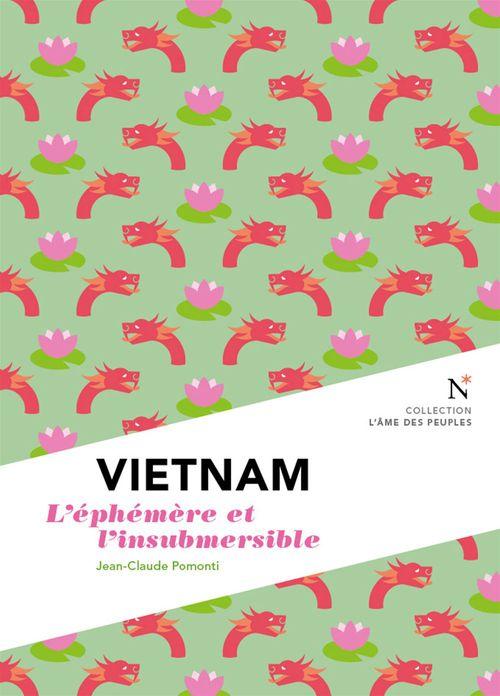 Vietnam ; l'éphémère et l'insubmersible