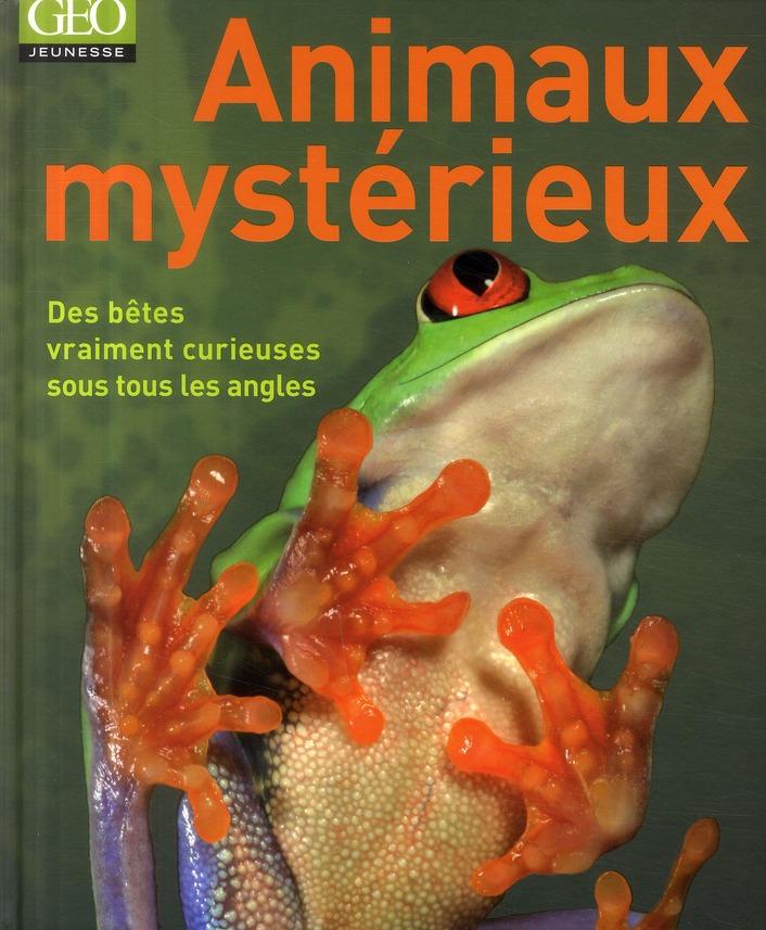 Animaux mystérieux ; des bêtes vraiment curieuses sous tous les angles