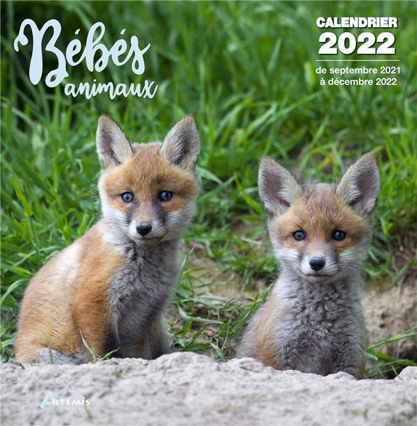 bébés animaux (édition 2022)
