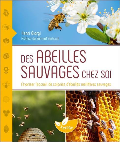 des abeilles sauvages chez soi ; favoriser l'accueil de colonies d'abeilles mellifères sauvages