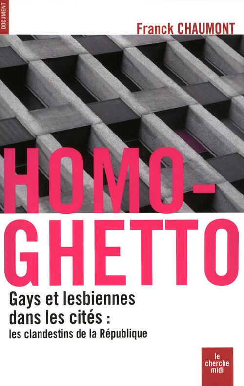 Homo-ghetto ; gays et lesbiennes dans les cités : les clandestins de la république