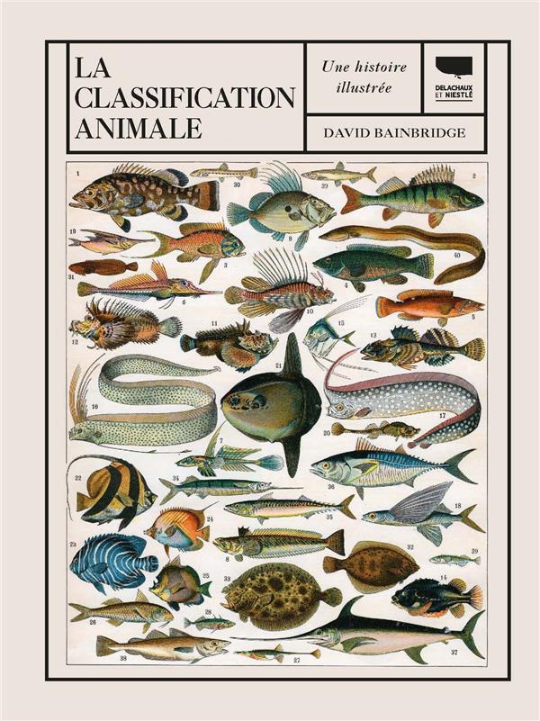 La classification animale ; une histoire illustrée