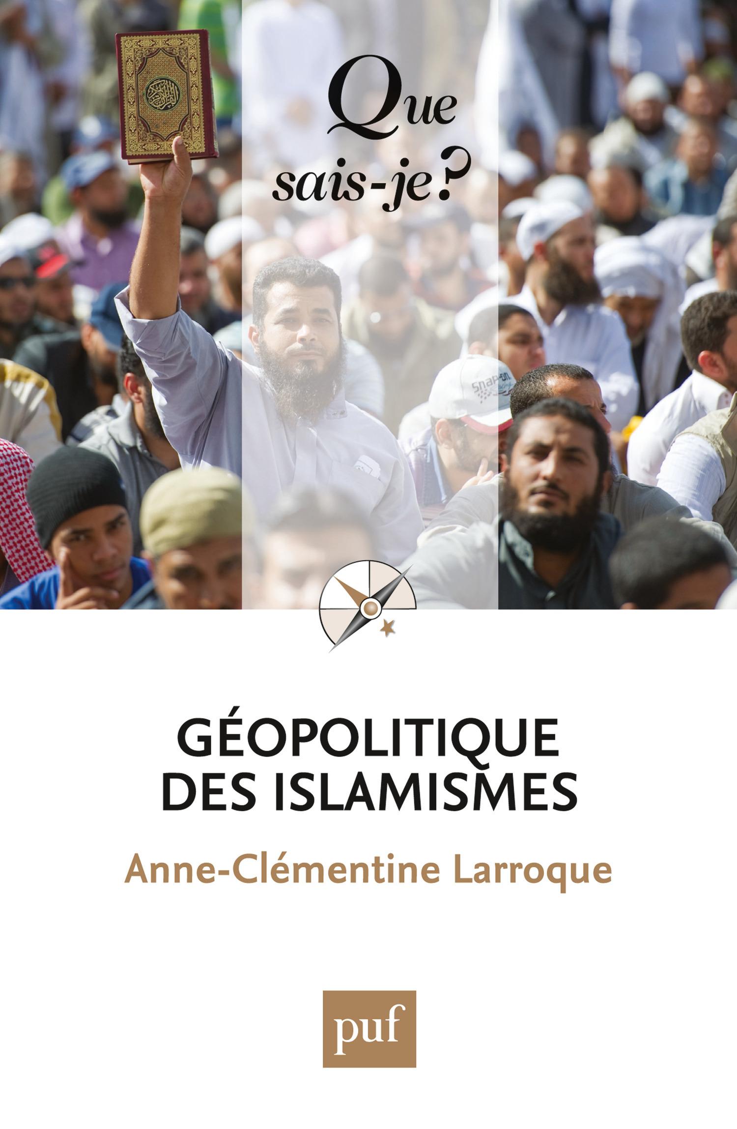 Géopolitique des islamismes (2e édition)