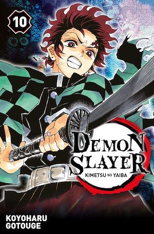 Demon slayer t.10