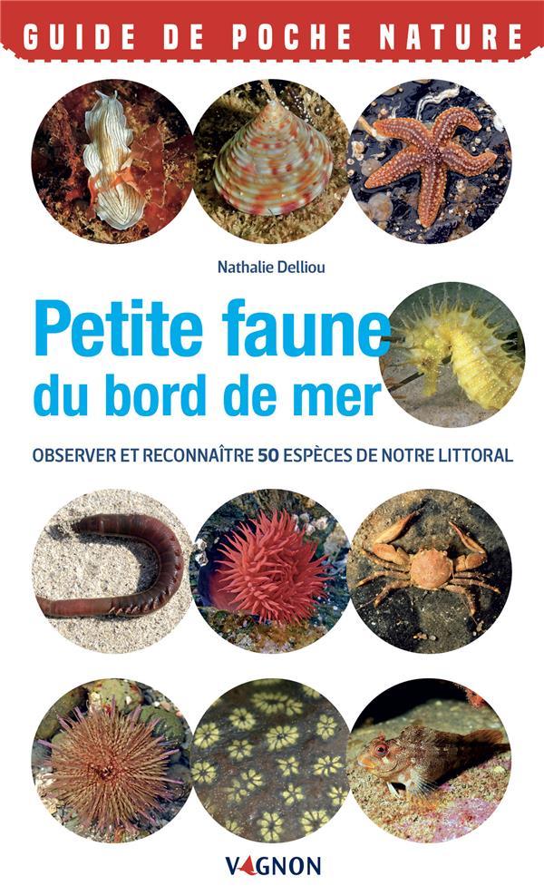 petite faune du bord de mer : observer et reconnaitre 50 espèces de notre littoral