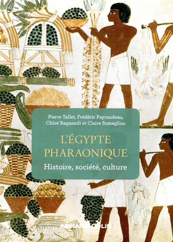 l'Egypte pharaonique ; histoire, société, culture