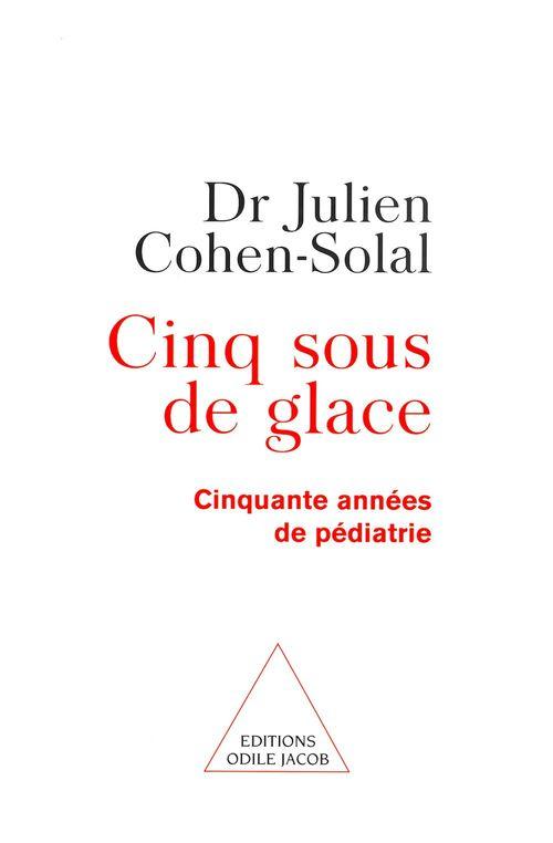 Vente EBooks : Cinq Sous de glace  - Julien Cohen-Solal