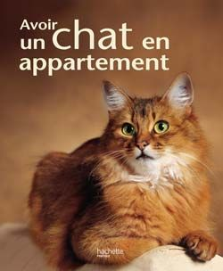 Avoir un chat en appartement